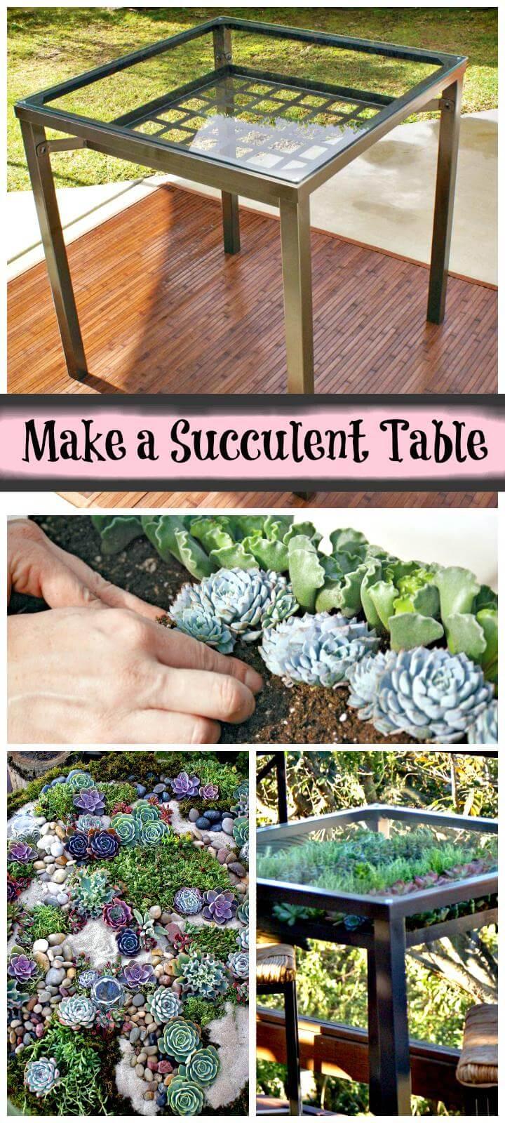 DIY handmade succulent table