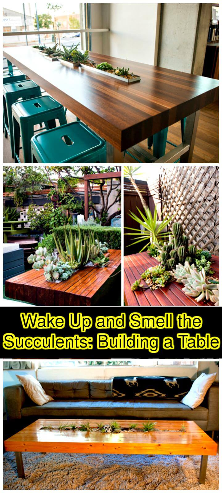 DIY handcrafted beautiful succulent table